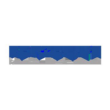 berzelius metall logo