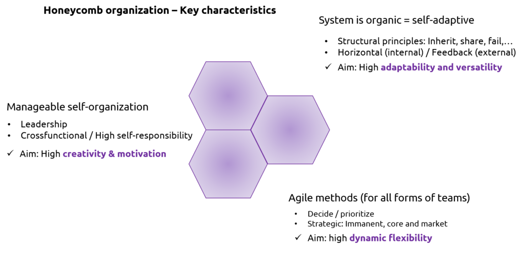 Graphic honeycomb organization